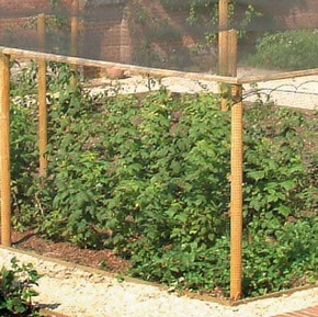 Timber Fruit Cages