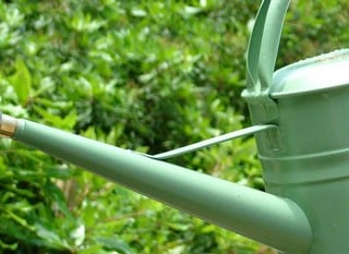 Haws Watering Cans