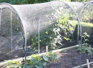 Hoops & Plant Covers