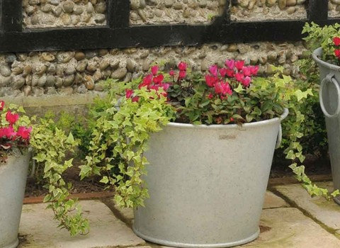 Decorative Planters & Pots