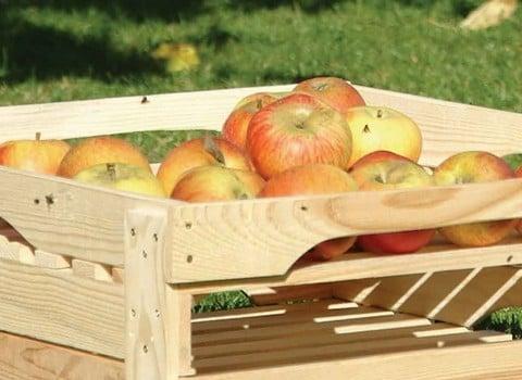 Food Preparation & Storage