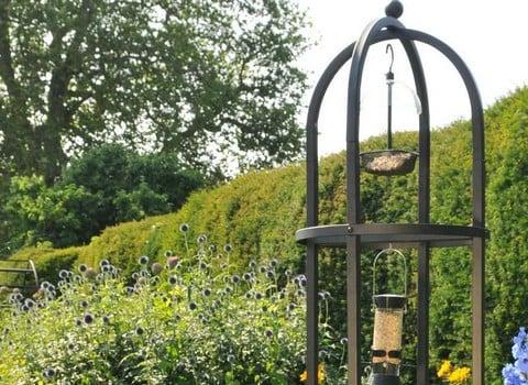 Garden Wildlife & Nature