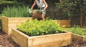 Cheer up your garden with raised vegetable beds