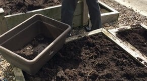 Filling our new Raised Bed in the sunshine!