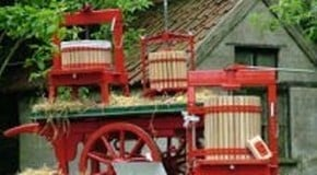 Fruit Press and Fruit Pressing