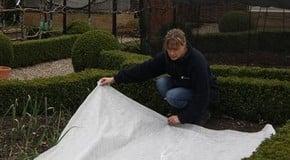 Garden Netting Advice