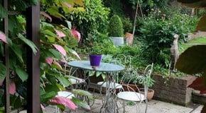 Garden Spring Clean