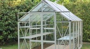 Greenhouse or Polytunnel