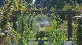 Harrod Garden Arches