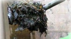 Hot Composting or Traditional Composting