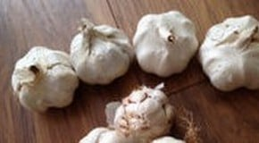 Kitchen Garden Blog - planting garlic cloves and onions sets
