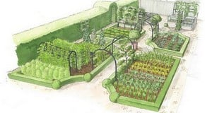 Kitchen Garden Planting Plan