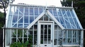 Our tender plants have been moved into the greenhouse