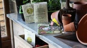 Seeds & Plug Plants
