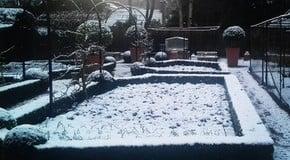 Snow arrives in the Kitchen Garden