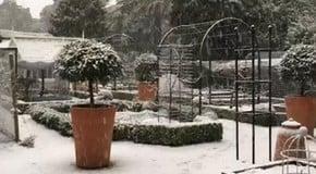 Snowing at the Kitchen Garden!