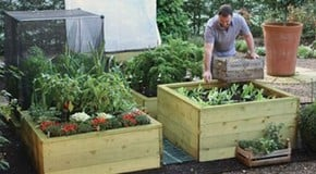 The benefits of growing in a raised bed