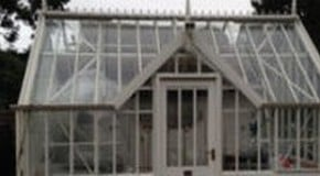 Weekly Kitchen Garden Blog - cleaning the greenhouse