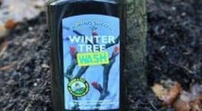 Weekly Kitchen Garden Blog - Glue Bands and Winter Tree Wash