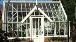 Weekly Kitchen Garden Blog - Greenhouse crops coming to an end