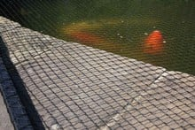 Flat Steel Pond Covers