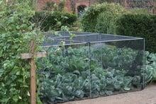 Harrod Slot & Lock® Vegetable Cage (1.2m H)