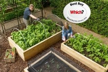 Standard Wooden Raised Beds