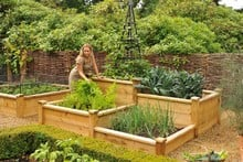 Superior Wooden Raised Beds