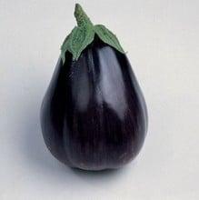 Aubergine Black Beauty (4 plants) Organic