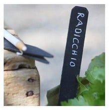 Blackboard Labels (10 pack and pencil)