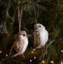 Bristle Bird Tree Decorations by Gisela Graham