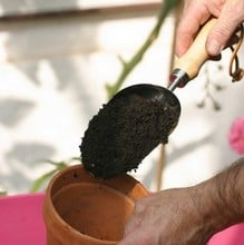 Burgon and Ball Compost Scoop