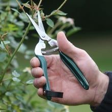 Burgon and Ball Flower and Fruit Snips