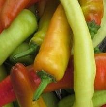 Chilli Pepper Hungarian Hot Wax (3 Plants) Organic