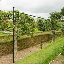 Fence System for Arches