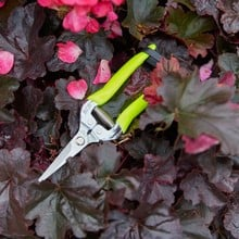 FloraBrite Flower and Fruit Snips
