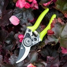 FloraBrite Pocket Pruner
