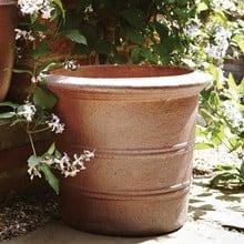 Florentine Terracini Pot