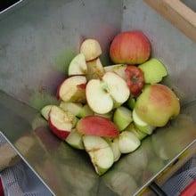 Fruit Crusher