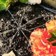 Garden Watering Kit