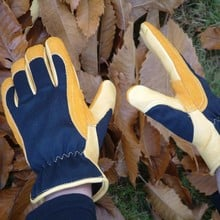 Gold Leaf Winter Touch Gloves