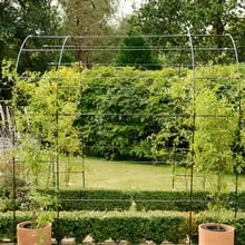 Harrod Linked Vintage Wire Arches - Matt Black