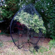 Popadome Fruit Tree Cover (3.5m high)