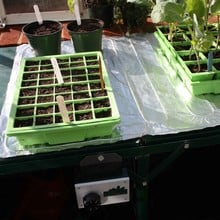 Propagation Heating Mats