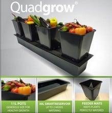 Quadgrow - Self Watering Planter