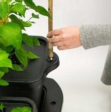 Self Watering Quadgrow Planter