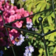 Square Trumpet Plant Supports