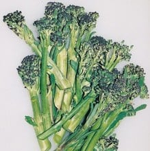 Summer Purple Sprouting Broccoli (10 Plants) Organic