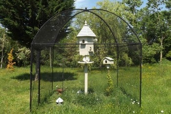 Dome Roof Steel Fruit Cage - Pineapple Finial