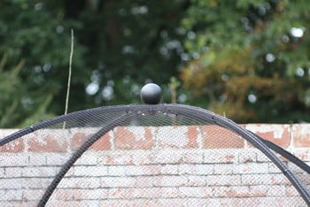 Dome Roof Steel Fruit Cage - Sphere Finial
